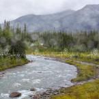 Alaska, Denali park