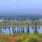 Alaska, scorci sempre diversi nelle distese verso Fairbanks