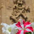 img_3014-notoi-fiori-e-il-barocco