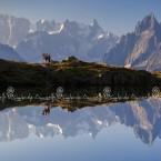 img_4612 Escursionisti sullo sfondo delle Grand Jorasses e Dente del Gigante