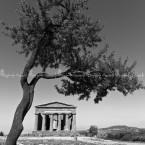 img_8033-wb-tempi-della-concordia-agrigento-sicilia