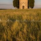 img_8356-la-chiesetta-di-vitaleta-nel-periodo-del-grano