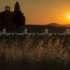 img_8365-il-grano-fa-da-cornice-alla-chiesetta-di-vitaleta-in-val-dorcia