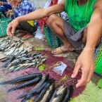 img_9466-pescivendolo-nel-mercato-di-in-paw-kone-lago-inle