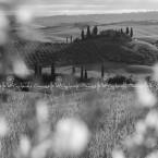 img_9526-toscana-casolare-tipico-in-val-dorcia