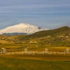 img_9582-tipiche-colline-e-campi-siciliani