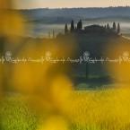 img_9621-casolare-tipico-toscano-in-val-dorcia